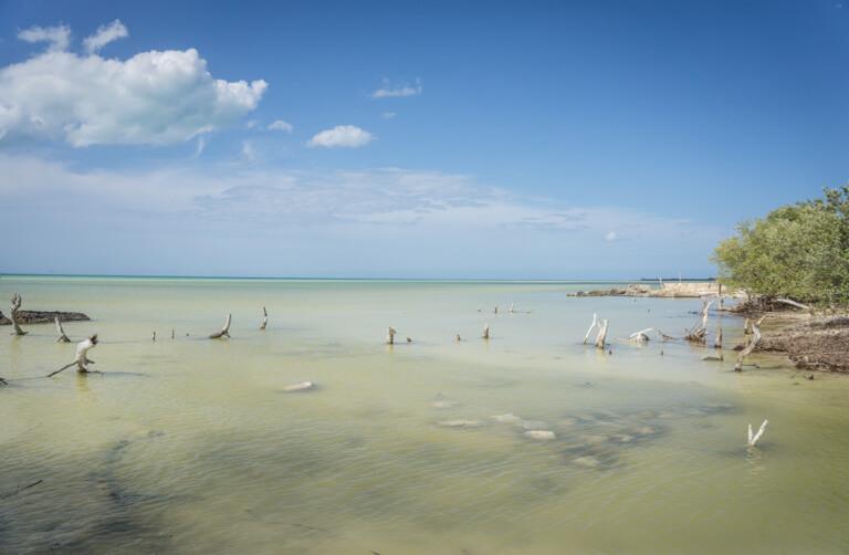 Isla Holbox Mexiko Punta Mosquito