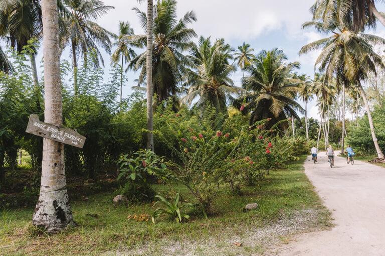 La Digue Seychellen L Union Estate Farm Vanilleplantage