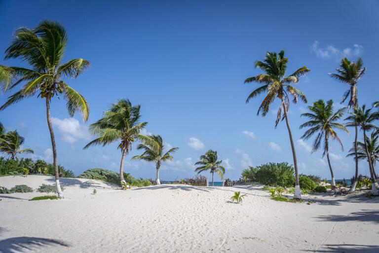 Mexiko Strand Punta Allen Sian Kaan Nationalpark Yucatan