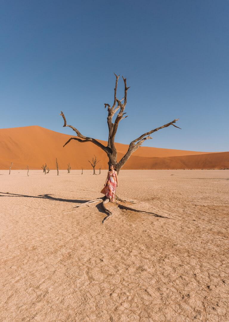 Namib Wueste Deadvlei