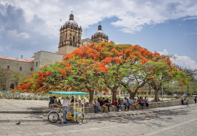 Oaxaca Mexiko Kirche von Santo Domingo de Guzman