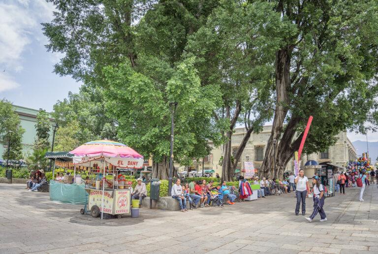 Oaxaca Mexiko Zocalo Restaurants