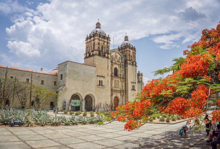 Oaxaca de Juarez Kirche von Santo Domingo de Guzman Flammenbaum