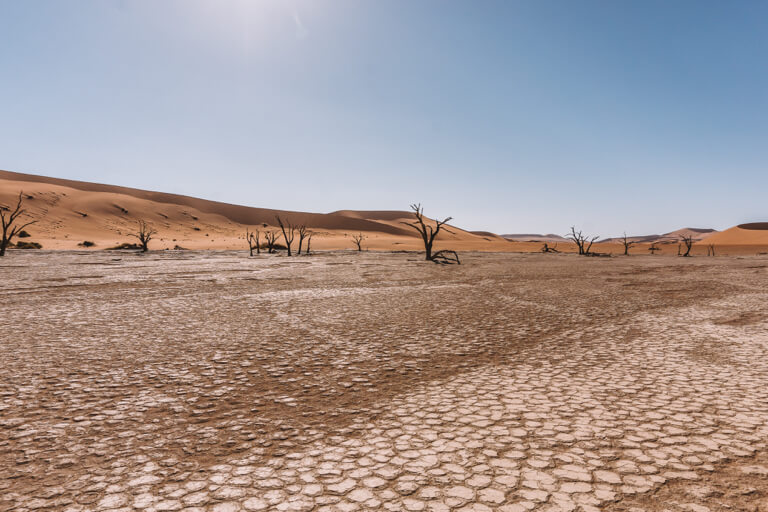 Sossusvlei Namibia Deadvlei