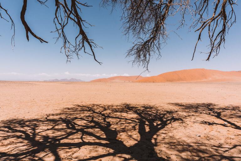 Sossusvlei Namibia Wueste
