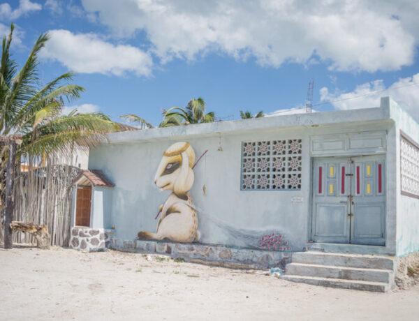 Street Art Hase Insel Holbox Mexiko