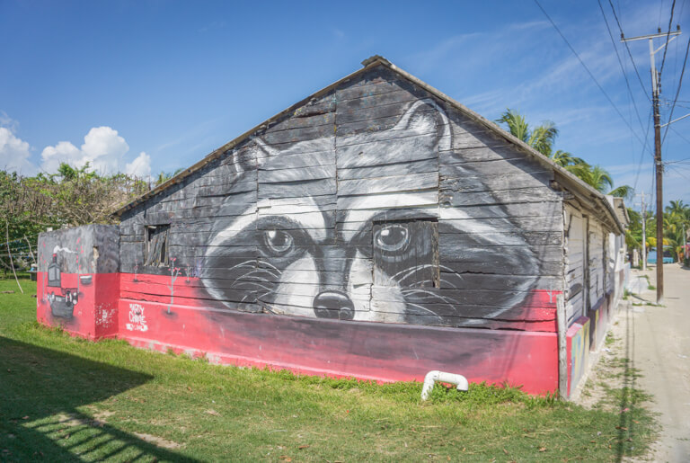 Street Art Insel Mexiko