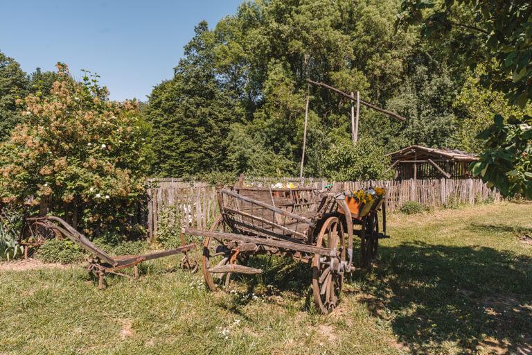 Szeged Botanischer Garten Puszta Farm