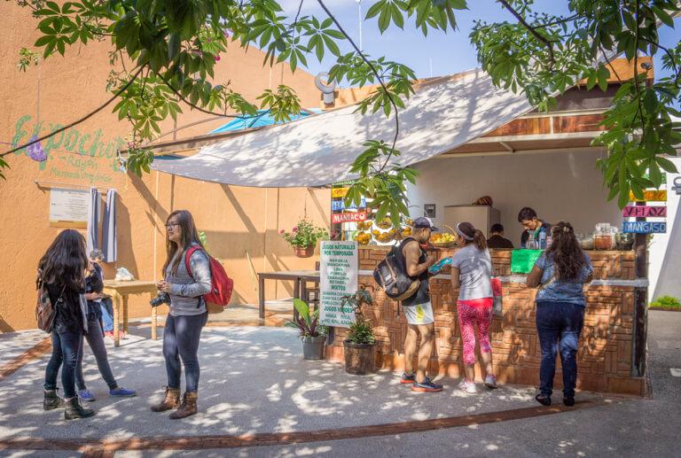 The Rayon Pochote Organic Market Oaxaca Mexiko