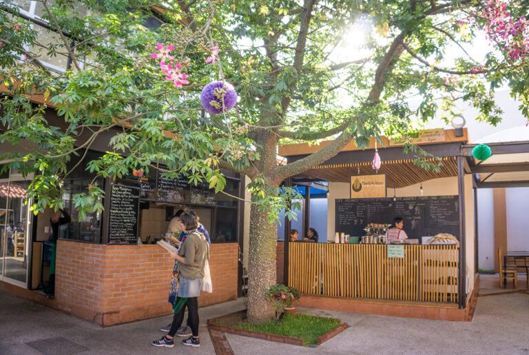 The Rayon Pochote Organic Market Oaxaca