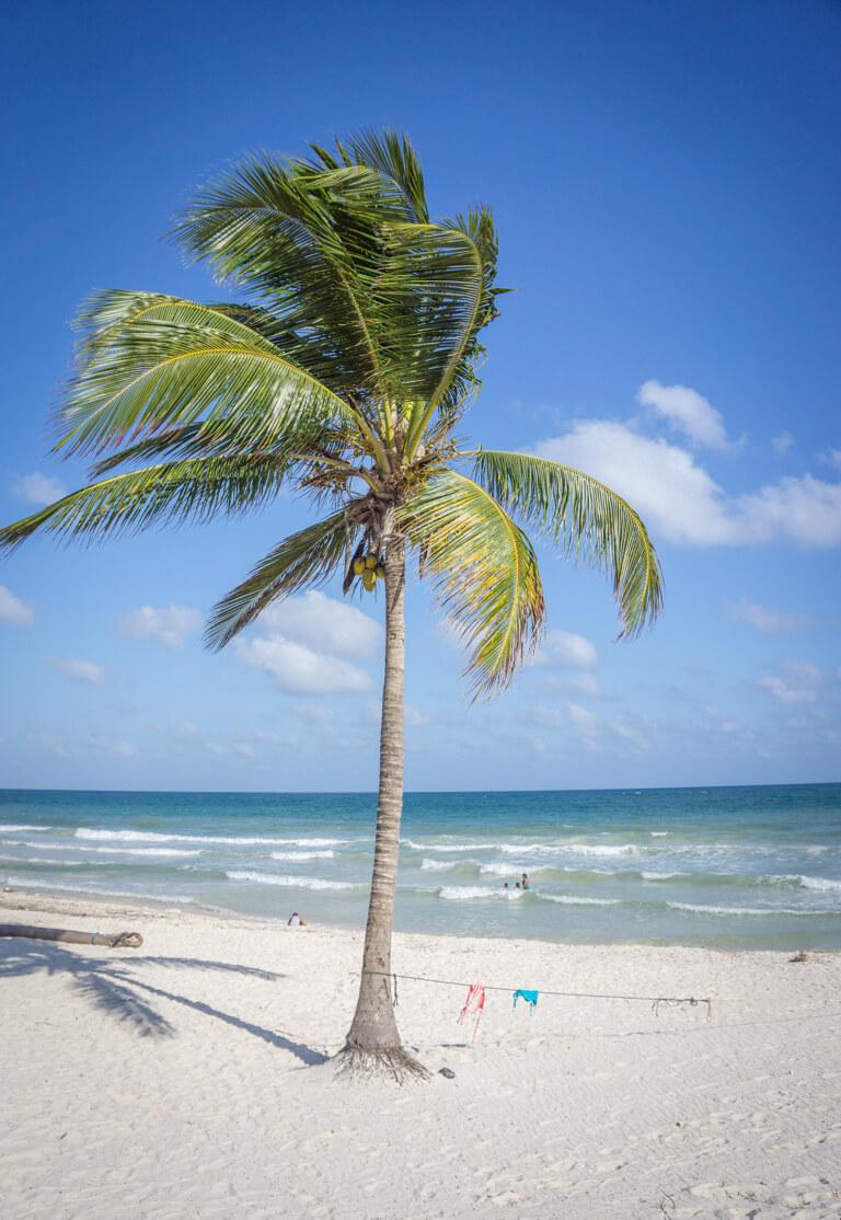 Tulum Mexiko Strand Punta Allen