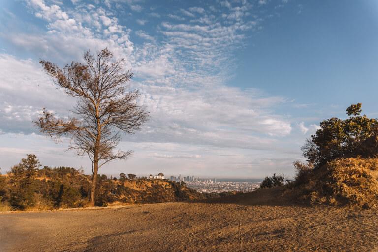 Ausblick Hollywood Hills