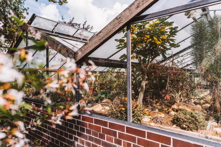 Botanischer Garten Erlangen Franken