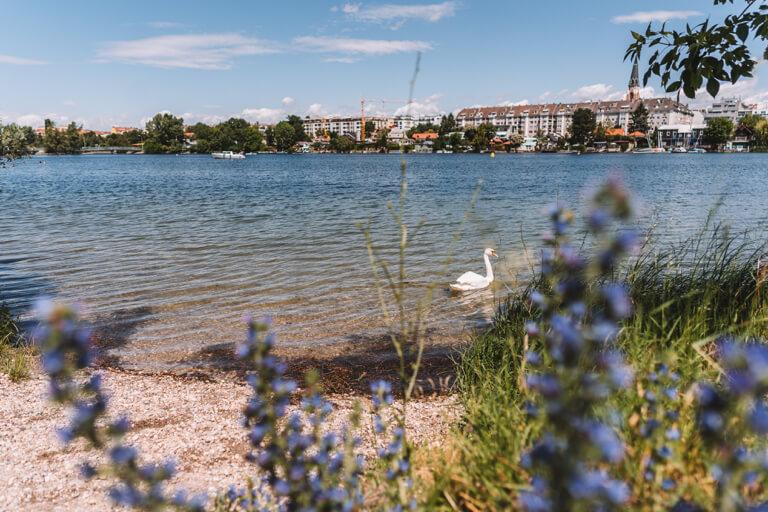 Wien Tipps Alte Donau