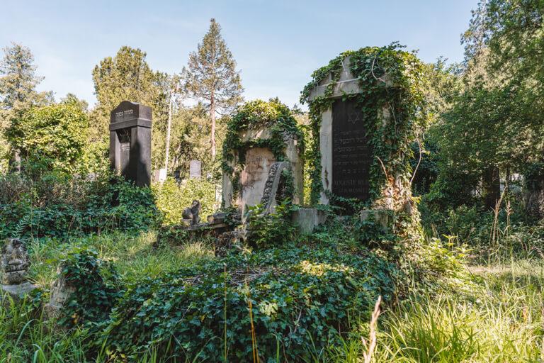 Wien Tipps Wiener Zentralfriedhof
