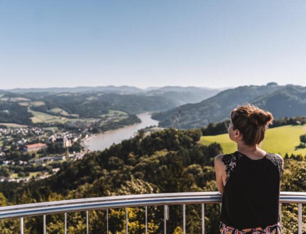 Gobelwarte Grein an der Donau Panorama
