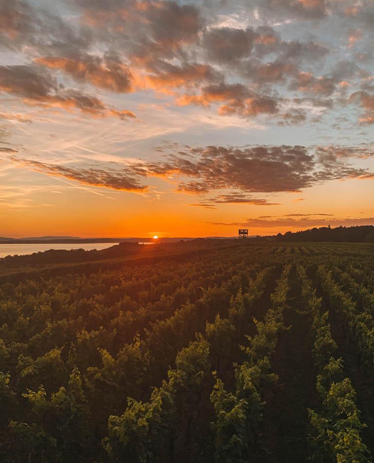 Sonnenuntergang Hagnau