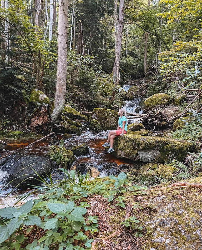 Wandern Yspertal Waldviertel