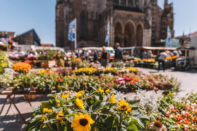 Wochenmarkt Muensterplatz