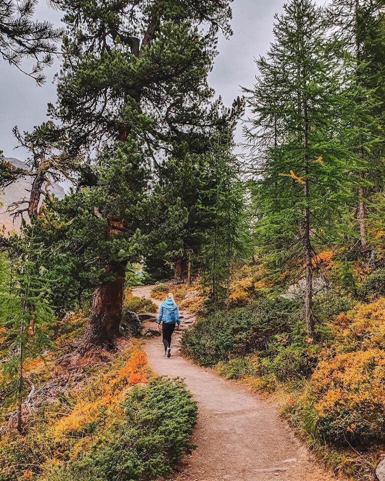 Wandern Zermatt