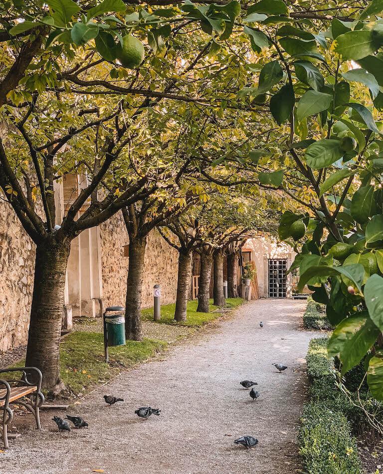 Hofgarten Brixen Suedtirol
