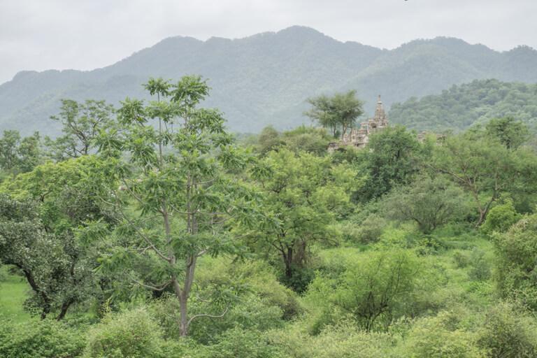 Indien Sehenswuerdigkeiten Rajasthan Ranakpur Tempel