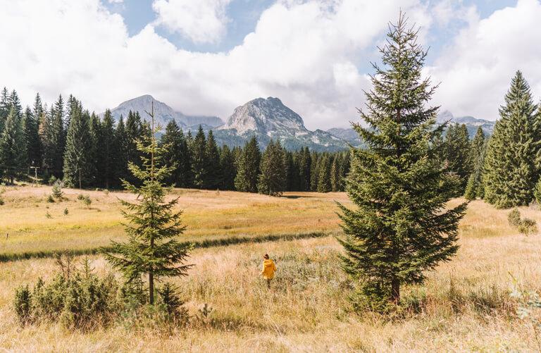 Montenegro Sehenswuerdigkeiten Durmitor Nationalpark