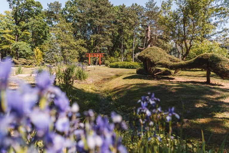 Szeged Ungarn Botanischer Garten Japanisches Tor