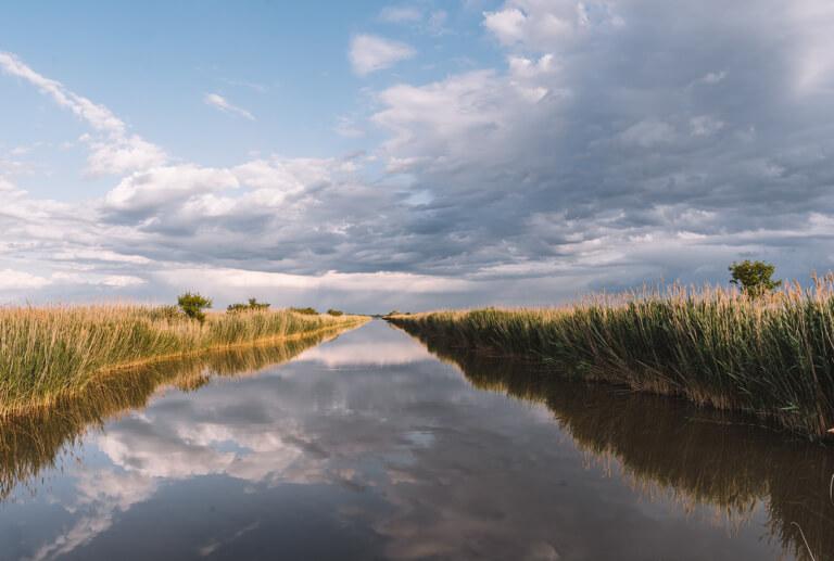 Weisser See Kiskunsagi Nemzeti Nationalpark Szeged