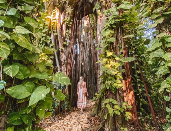 Banyan-Tree-Kuramathi-Malediven