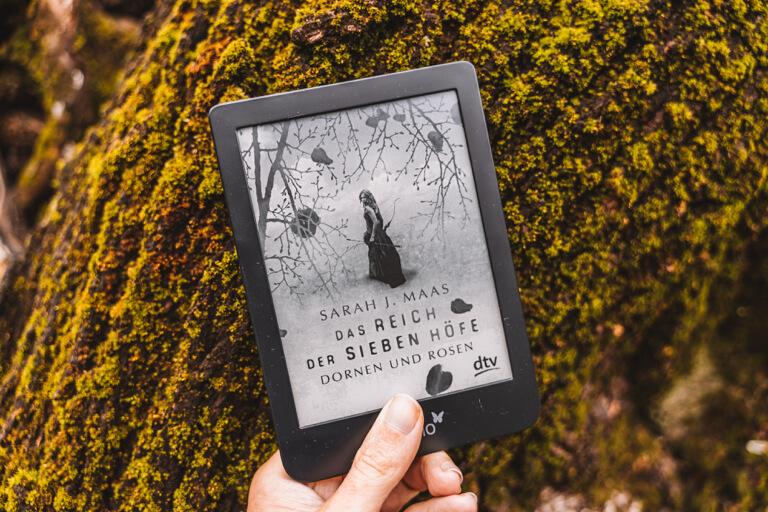 Rezension Das Reich der sieben Hoefe Sarah J Maas Buch