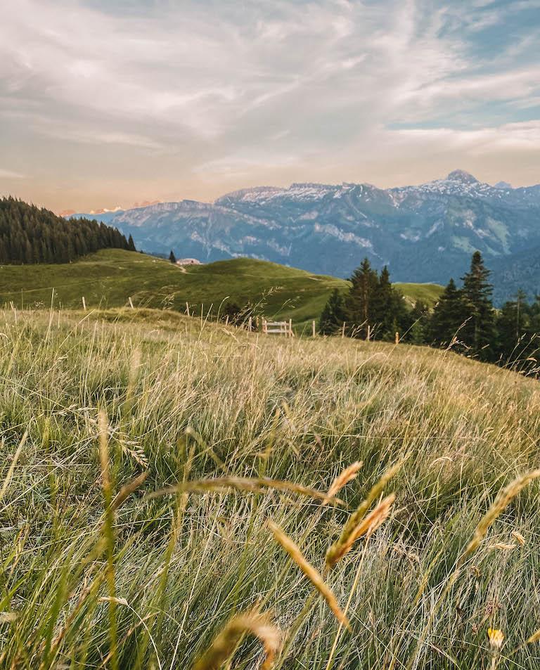 Bregenzerwald Sonnenuntergang