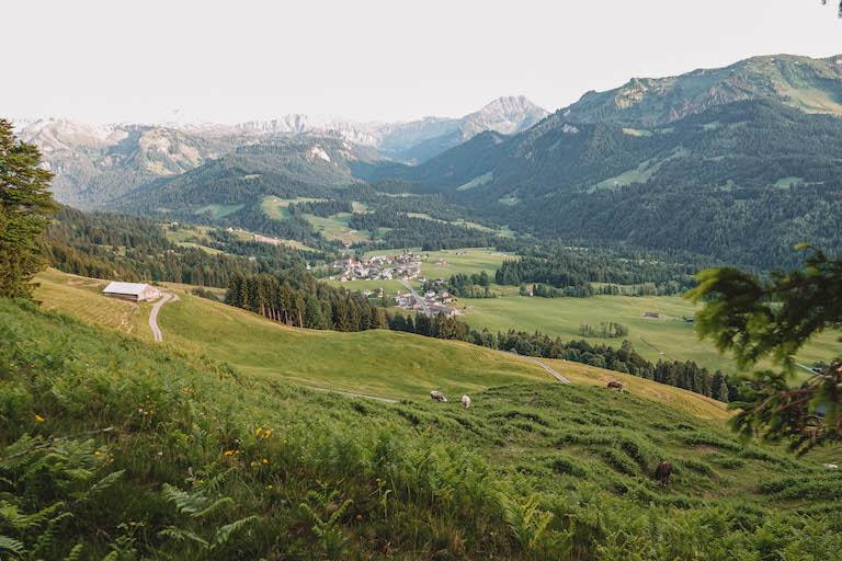 Bregenzerwald Wanderung