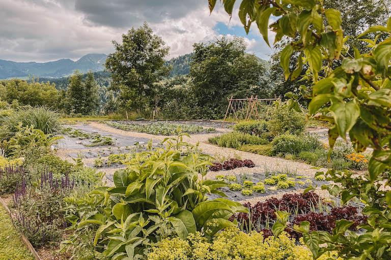 Ernele Hittisau Garten
