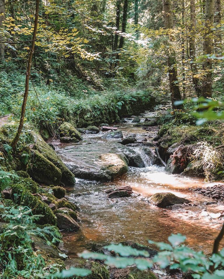 Schwarzwald Sehenswuerdigkeiten Fuchsklinge Calw