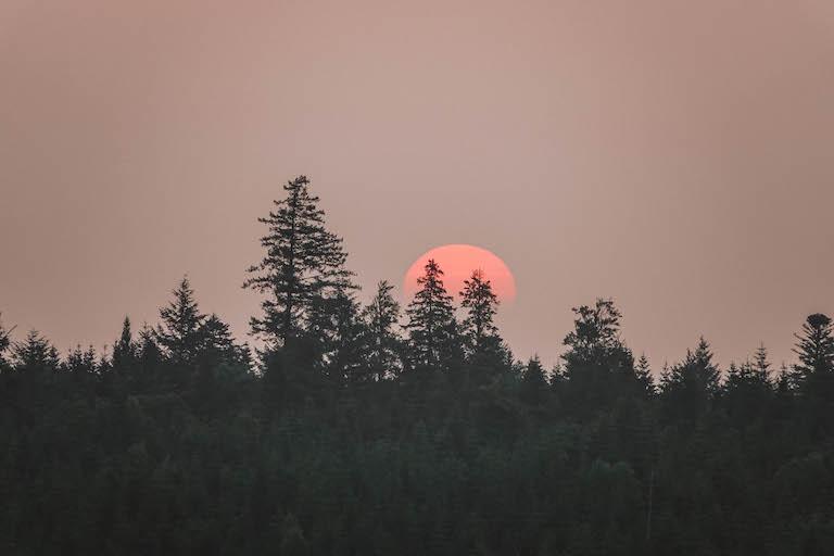 Schwarzwald Sonnenuntergang